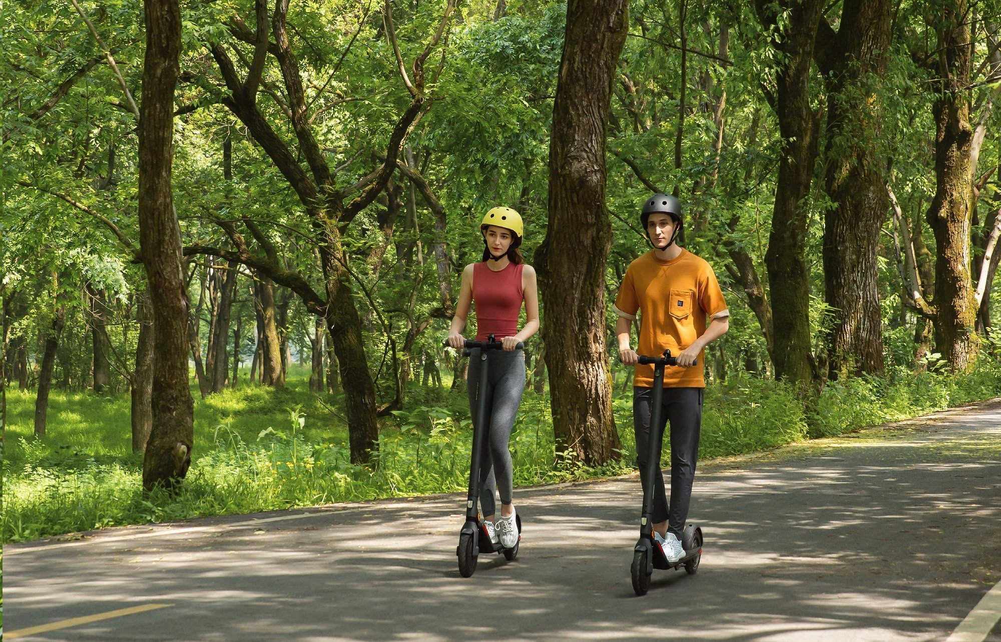 Segway Ninebot E25E Electric Scooter   Expert Opinion 3